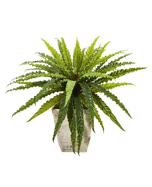 "Nearly Natural 24"" Asplenium Artificial Plant in Country White Planter"