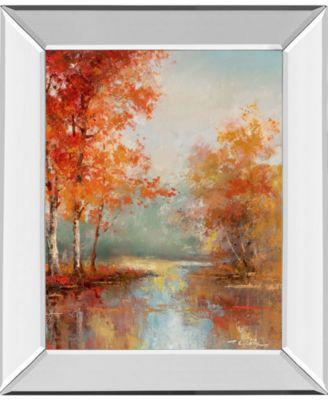"Autumns Grace I by T.C Chiu Mirror Framed Print Wall Art - 22"" x 26"""