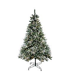 6.5' Pre-Lit Frosted Sierra Fir Artificial Christmas Tree - Warm White LED Lights