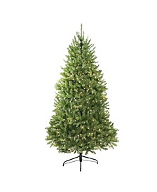 9' Pre-Lit Northern Pine Full Artificial Christmas Tree - Clear Lights