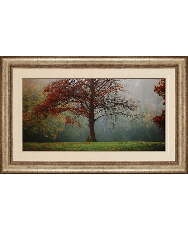 "Paragon Late Autumn Morning Framed Wall Art, 33"" x 53"""