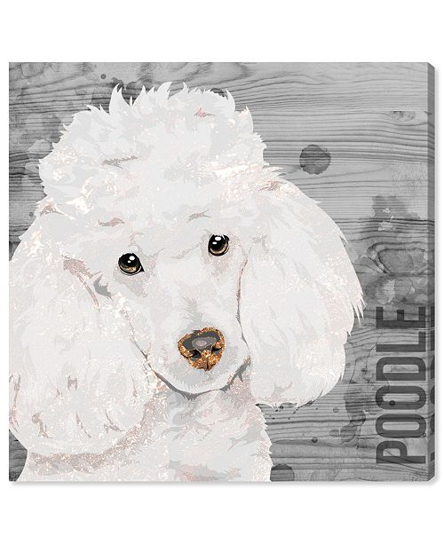 """Oliver Gal Love My Poodle Canvas Art, 16"""" x 16"""""""