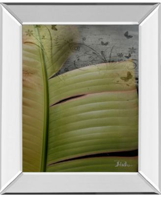 """Butterfly Palm II by Patricia Pinto Mirror Framed Print Wall Art, 22"""" x 26"""""""