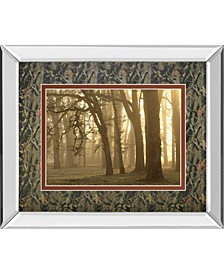 """Woodland Sweep by Dennis Frate Mirror Framed Print Wall Art, 34"""" x 40"""""""