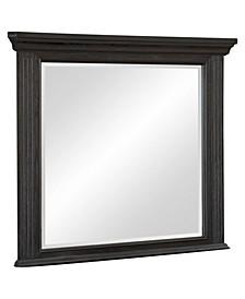 Davi Mirror