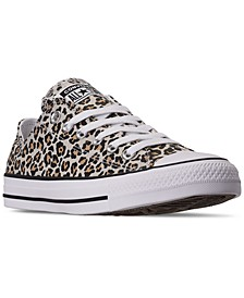Women's Chuck Taylor All Star Cheetah Low Top Casual Sneakers from Finish Line