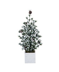 Pinecone Medium Green Christmas Frosted Tree with Birch Box