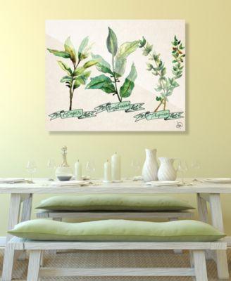 """Herb Trio in Green on Tan 16"""" x 20"""" Acrylic Wall Art Print"""
