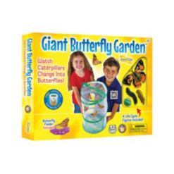 Insect Lore Stem Educational Butterfly Life Cycle Toy With Figurines