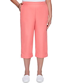 Petite Miami Beach Pull-On Capri Pants