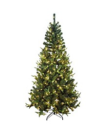 7-Foot Pre-Lit Sierra Green Tree PVC and PE Christmas Tree