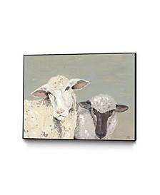 "14"" x 11"" Sweet Lambs I Art Block Framed Canvas"