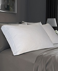 Quilted Feather Standard/Queen Pillow