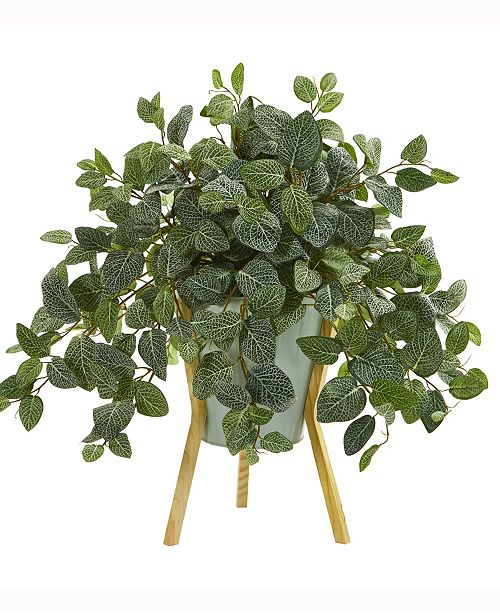 Nearly Natural 22in. Fittonia Artificial Plant in Green Planter with Wooden Legs