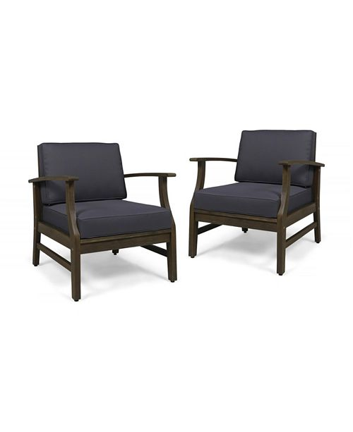 Noble House Ximena Club Chair (Set of 2)