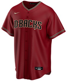 Men's Arizona Diamondbacks Official Blank Replica Jersey