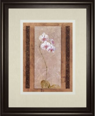 Contemporary Orchid II by Carney Framed Print Wall Art, 34