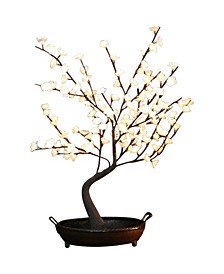 Illuminated Bonsai Tree