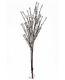 Illuminated Willow Branches