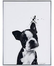 "Boston Terrier Pet Paintings on Reverse Printed Glass Encased with a Gunmetal Anodized Frame Wall Art, 24"" x 18"" x 1"""