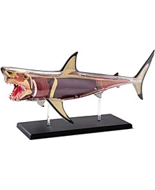 Toy Anatomy Shark Kit