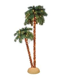 3.5'- 6' Palm Tree