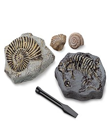 Toy Excavation Kit Mini Fossil, 2 Pieces