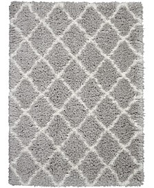 Luxe Shag LXS02 Gray and Ivory 5' x 7' Area Rug