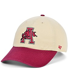 Men's Arkansas Razorbacks Vault 2 Tone Clean Up Cap