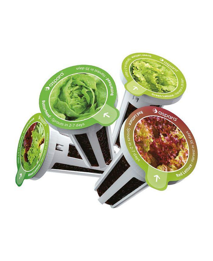 Aspara - KLS0001 8 capsule seed kit - Lettuce Selected