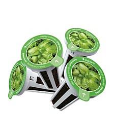 KHB0001 8 Capsule Seed Kit -Sweet Basil