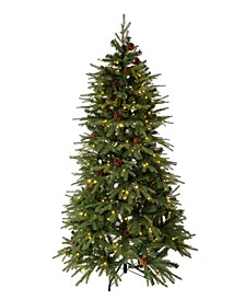 Pre-Lit Green Fir Artificial Christmas Tree with 350 LED Lights, Multi-Color, Remote Controller
