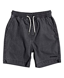 Quicksilver Big Boys Shorts