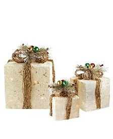 Sisal Gi Boxes with Twine Bows Outdoor Lighted Christmas Decorations