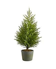 "Norfolk Island Pine ""Natural Look"" Artificial Tree in Decorative Planter"