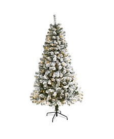 Flocked West Virginia Fir Artificial Christmas Tree with 250 Clear LED Lights