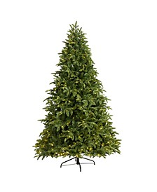 Wyoming Fir Artificial Christmas Tree with 500 Clear LED Lights and 1580 Bendable Branches