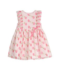 Baby Girls Floral Mesh Dress