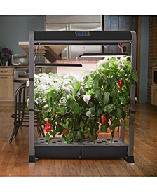 Farm XL Salad Bar 24-Pod Seed Kit