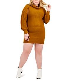 Trendy Plus Size Sweater Dress