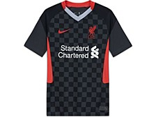 Liverpool FC Club Team Youth 3rd Stadium Jersey