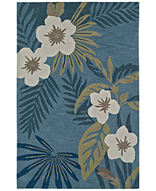 Macy's Fine Rug Gallery Maui MM7 Regatta Area Rug