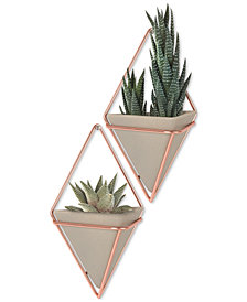 Umbra Trigg Small Wall Vessel Set of 2