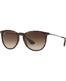 Sunglasses, RB4171 ERIKA