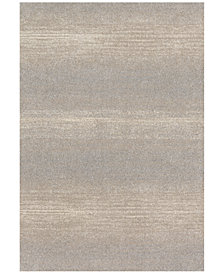 "Loloi Emory EB-03 Silver 2'5""x7'7"" Runner Area Rug"