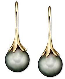 14k Gold Earrings, Cultured Tahitian Pearl
