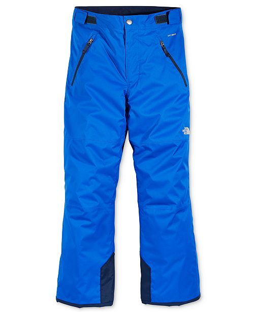 532153ce60f9 The North Face Freedom Insulated Snow Pants