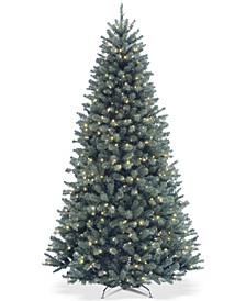6.5' North Valley Blue Spruce Tree With 500 Clear Lights