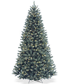 National Tree Company 6.5' North Valley Blue Spruce Tree With 500 Clear Lights