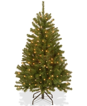 National Tree Company 4 North Valley Spruce Tree With 150 Clear Lights
